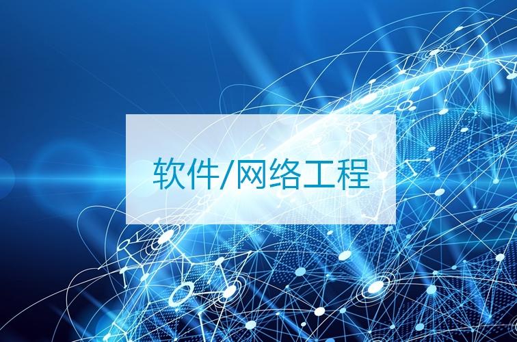 软件/网络工程